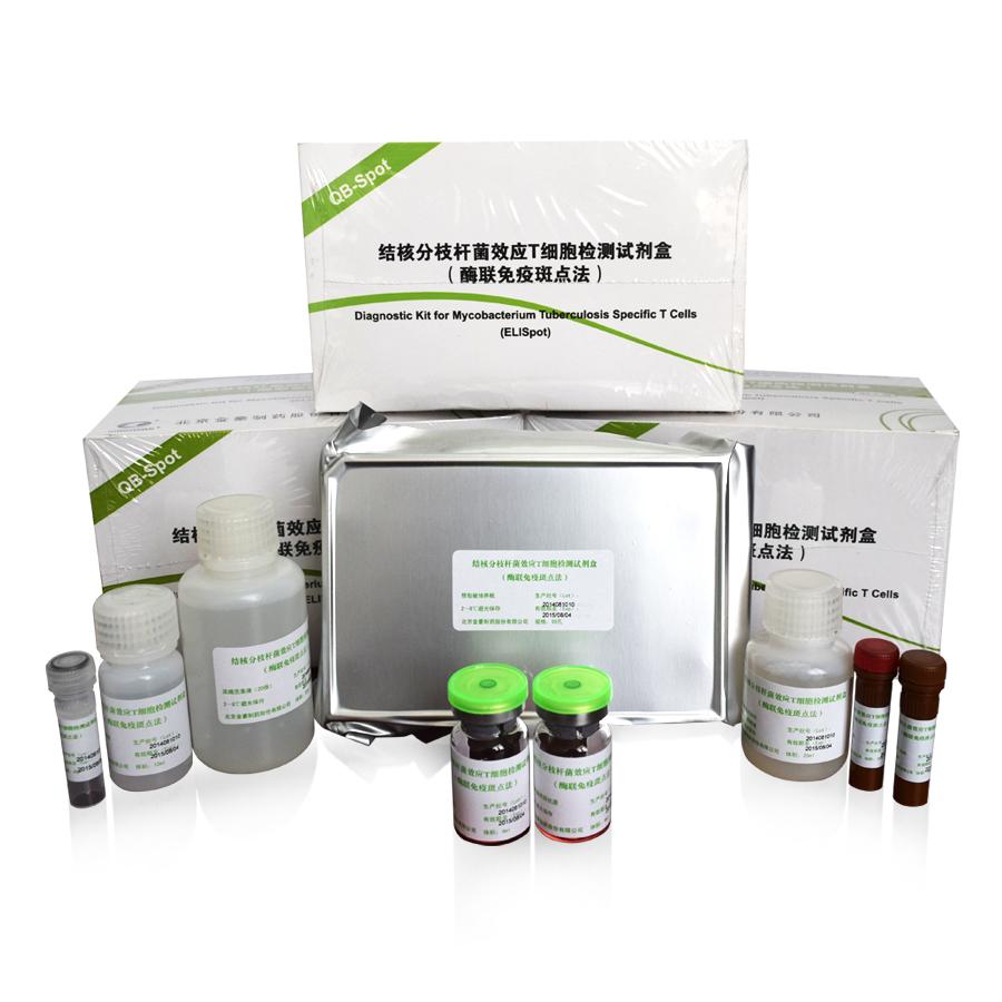 (酶联免疫斑点法)